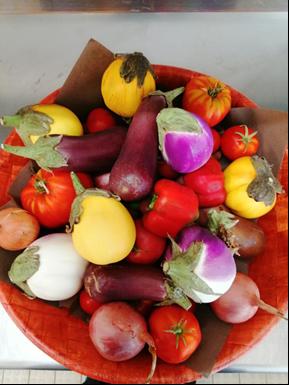 Production de légumes par l'atelier Maraichage